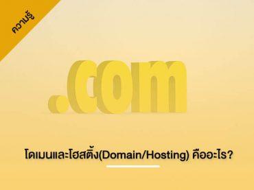 โดเมนและโฮสติ้ง(Domain/Hosting) คืออะไร? | ทีมงาน DULAEWEB